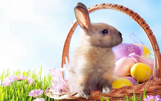 """Képtalálat a következőre: """"húsvéti képek"""""""